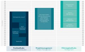 Das Laufbahnmodell von gradar the job evaluation engine mit Fach- und Führungslaufbahn sowie Projektmanagement